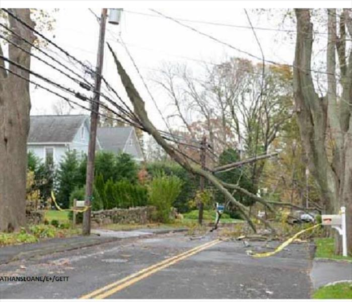 After a storm, damaged trees lay across telephone and electric wires.