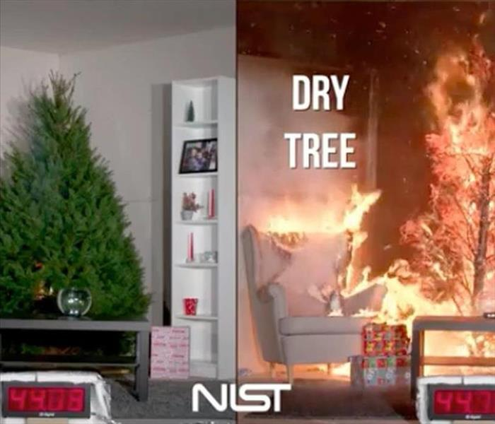 Right shows a dry tree on fire, left shows a hydrated tree not on fire.