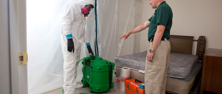 Chesapeake, VA mold removal process